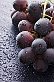 Red grapes with drops of water (close-up)