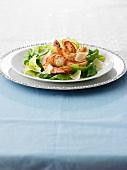 Cesar salad with shrimp
