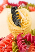 Colorful fusilli, rotelle and spaghetti (close up)