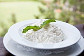 Bowl of Cottage Cheese with a Mint Garnish; Outdoors