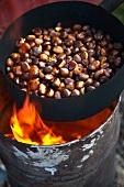 Roasting organic chestnuts