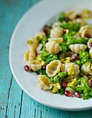 Pasta with rapini cabbage, pomegranate seeds and pistachio nut sauce