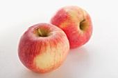 Two apples (variety: Elstar)