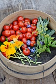 Tomatoes and garden herbs in a sieve