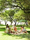 Mehrere Leute beim Picknick im Park