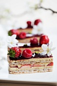 Raspberry and strawberry slice with cherry blossoms