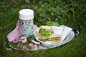 Picnic with cucumber and avocado sandwiches