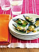 Grilled tandoori mussels