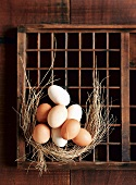 Fresh eggs and straw on a seedling tray
