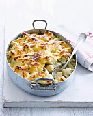 Macaroni-cheese with chicken