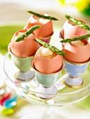 Boiled eggs with asparagus spears