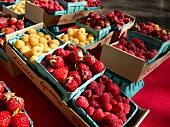 Fresh Berries at a Farmers Market in Portland Oregon