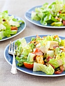 Three Plates of Caesar Salad with Tomatoes