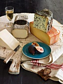Still life with an assortment of Spanish cheeses