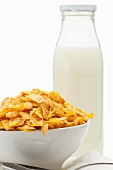 Cornflakes in white bowl and a bottle of milk
