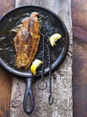Braun gebratenes Fischfilet mit ausgedrückten Zitronenschnitzen