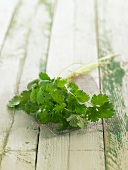 Cilantro on a wood surface