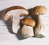 Three fresh porcini mushrooms, whole and halves