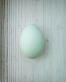 One blue duck egg