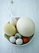 Assorted eggs in a kitchen colander