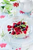 Quark dessert with berries