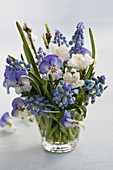 A small bouquet of grape hyacinths, cherry blossoms and violas