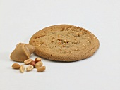 A Peanut Butter Cookie with Peanut Butter and Peanuts