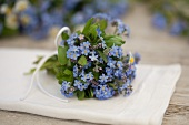 A small bunch of forget-me-not
