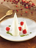Scoops of vanilla ice cream with fresh raspberries on a plate
