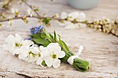A bunch of forget-me-not and garden jasmine