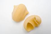 Lumaconi Giganti (giant pasta shells)
