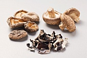 Dried mu-err mushrooms, dried and fresh shiitake mushrooms