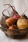 Various turnips in a wire basket