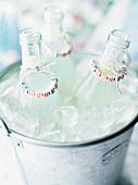 Lemonade bottles in an ice bucket