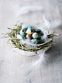 Coloured quails' eggs in Easter nest