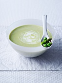 Cream of spring vegetable soup