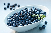 Blueberries in an oval bowl
