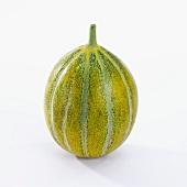 Musk melon (cucumis melo)