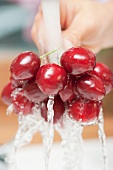 A hand holding sweet cherries under running water