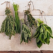 Fresh herbs hung up to dry