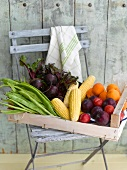 A crate of vegetables, sweet corn and fruit on a garden chair