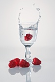 A raspberry falling into a schnapps glass