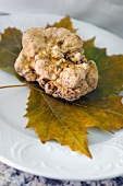 An Alba white truffle on a leaf