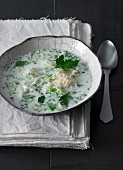 White cabbage soup with cheese and parsley