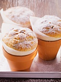 Min yeast cakes baked in clay pots