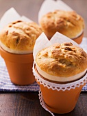 Mini yeast cakes baked in clay pots