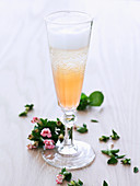 Sparkling wine cocktail