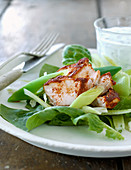 Green salad with marinated chicken breast