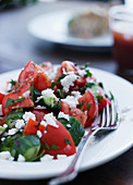 Tomato and cucumber salad with cream goat's cheese
