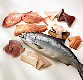 Assorted Fresh Fish; Whole and Fillets